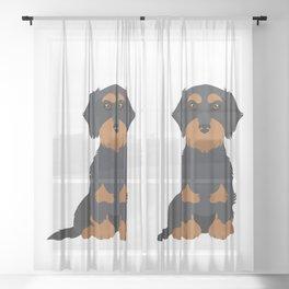 Black Tan Wirehaired Dachshund Sit Sheer Curtain