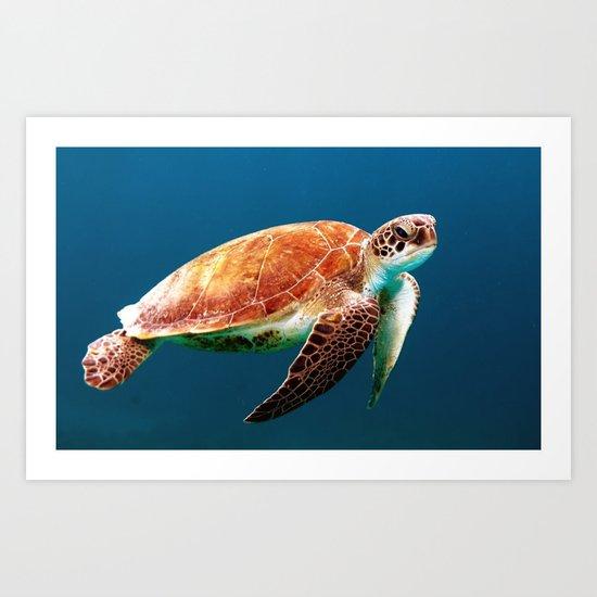 Turtley Art Print