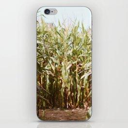 Corn Maze iPhone Skin