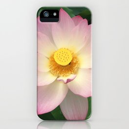 Awesome Lotus Blossom iPhone Case
