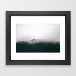 Forest Fog XV Framed Art Print