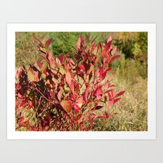 Plants on the powerlines Art Print