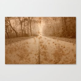 Rustic Forest Road Canvas Print