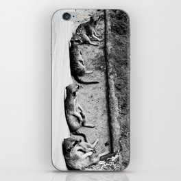 Row of meerkats iPhone Skin
