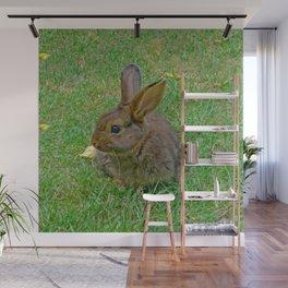 Little Bunny Wall Mural