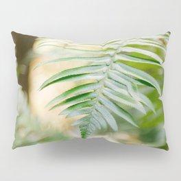 Fern Beneath the Redwoods Pillow Sham