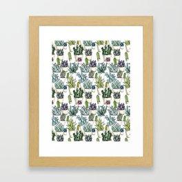 Tiny Cactus Succulents Cacti Framed Art Print