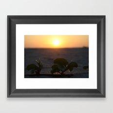 Stay Focused Framed Art Print