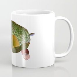 Fruit Sulcata Coffee Mug