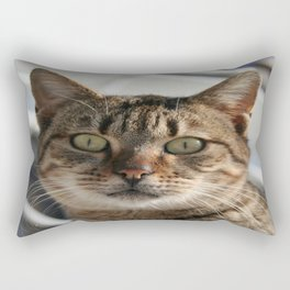 Beautiful Eyed Tabby Cat  Rectangular Pillow
