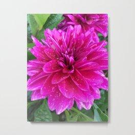 Flower Kissed by the Rain Metal Print