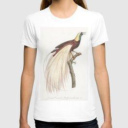 Emperor bird-of-paradise male from Histoire Naturelle des Oiseaux de Paradis et Des Rolliers (1806) T-shirt