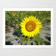 Sunflower King Art Print