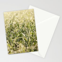 young grass plants, close-up Stationery Cards