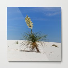Living In The White Sand Dunes Metal Print