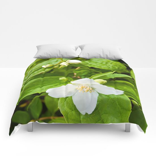Wild Sicilian Jasmine Comforters