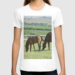 Haras 05 T-shirt