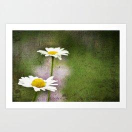 Daisy Chain 4 Art Print