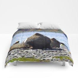 Fur Seal Resting Comforters