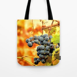 Grape Vines in Autumn Tote Bag