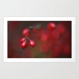 Red autumn 1 Art Print