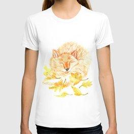 Cute orange fox sleeps T-shirt