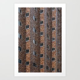 Tokyo Windows Art Print