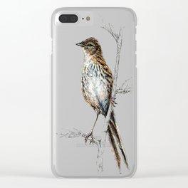 Matata, New Zealand Fernbird Clear iPhone Case