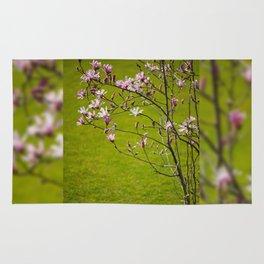 Vibrant pink Magnolia blossoms Rug
