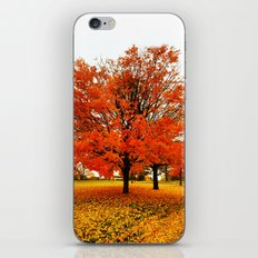 Changing Colors. iPhone & iPod Skin