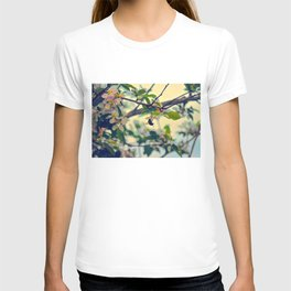 Bumble Bee Pollinating Apple Tree T-shirt