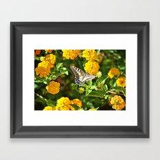 butterfly flowers Framed Art Print