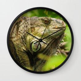 Costa Rican Iguana Wall Clock