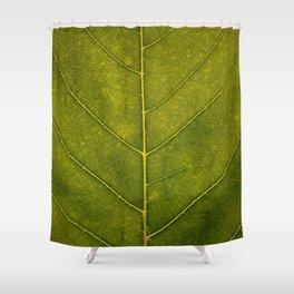 Leaf Vein - HD Natue Shower Curtain