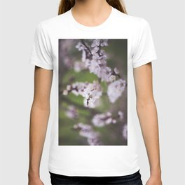 Hello Spring II. T-shirt