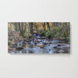 Cannop Brook Panorama Metal Print