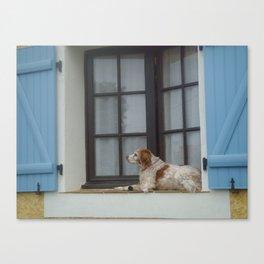 Pensive dog  Canvas Print