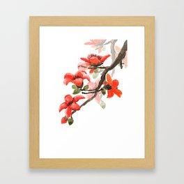 red orange kapok flowers watercolor Framed Art Print