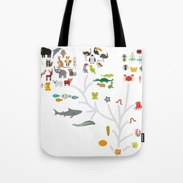 Evolution scale from unicellular organism to mammals. Evolution in biology, scheme evolution of anim Tote Bag