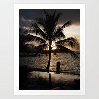 Palm @ Sunset Art Print
