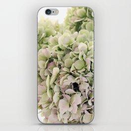 Hydrangea iPhone Skin