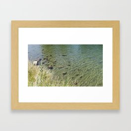 The Calm Along the River Framed Art Print