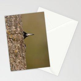 Black woodpecker Stationery Cards