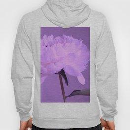 Single peony (ultra violet) Hoody