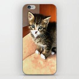 Tabby Cat Named Pipsqueak  iPhone Skin