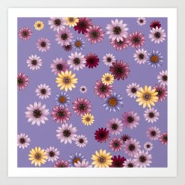 Multicolored natural flowers 9 Art Print