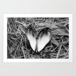 Loveheart Mussels Art Print
