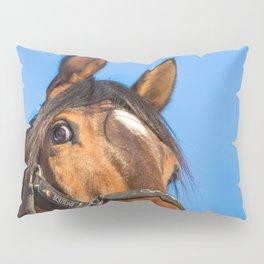 Laughing horse Pillow Sham