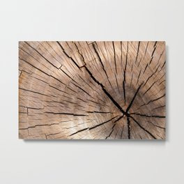 Brown Wood Metal Print