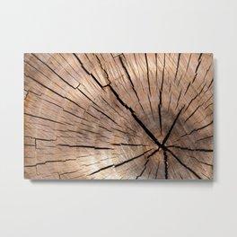 Brown Wood Metal Print